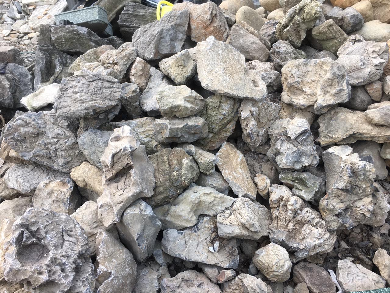đá tai mèo