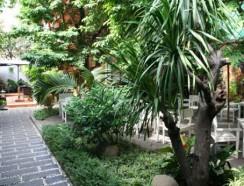 Những gợi ý khi làm tiểu cảnh sân vườn cho quán cà phê